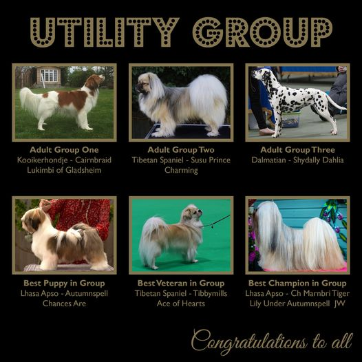 2020 Utility Groups Winners